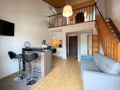 Appartement meuble Montauban T1bis 37 m2 Centre ville