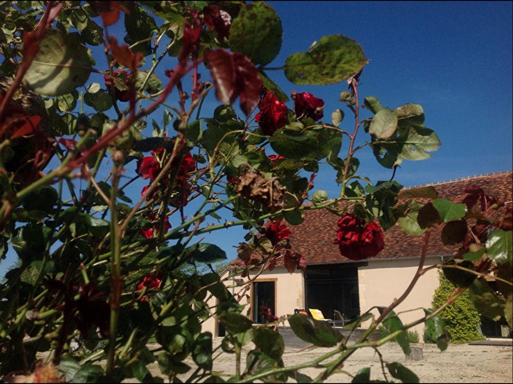 36000 Châteauroux - Magnifique ancien corps de ferme rénové - Longère sur un terrain clos de 1,6 Hectare