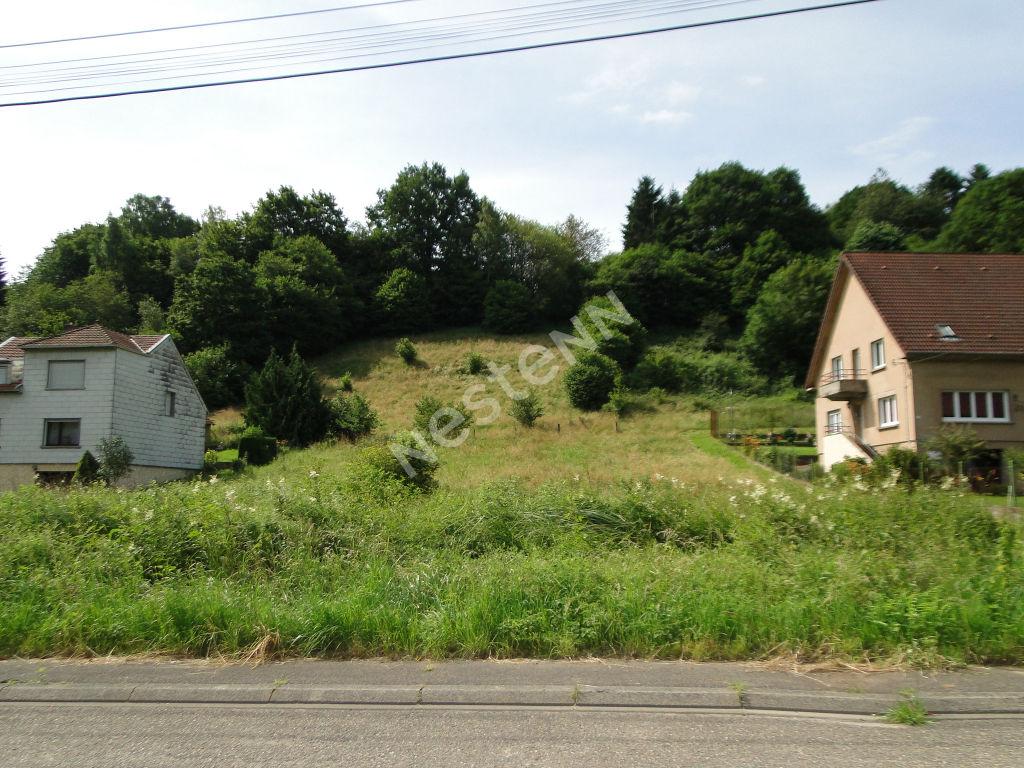 photos n°1 Très beau terrain parfaitement orienté - Saint Avold - 943 m2