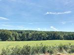Meaulne, en Forêt de Tronçais, Chalet  3 chambres. 10/17