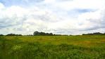 Ensemble immobilier 42 hectares - Saint Christophe Du Ligneron 3/10