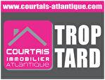 Murs - Local commercial - 50m² - Brétignolles Sur Mer 9/9