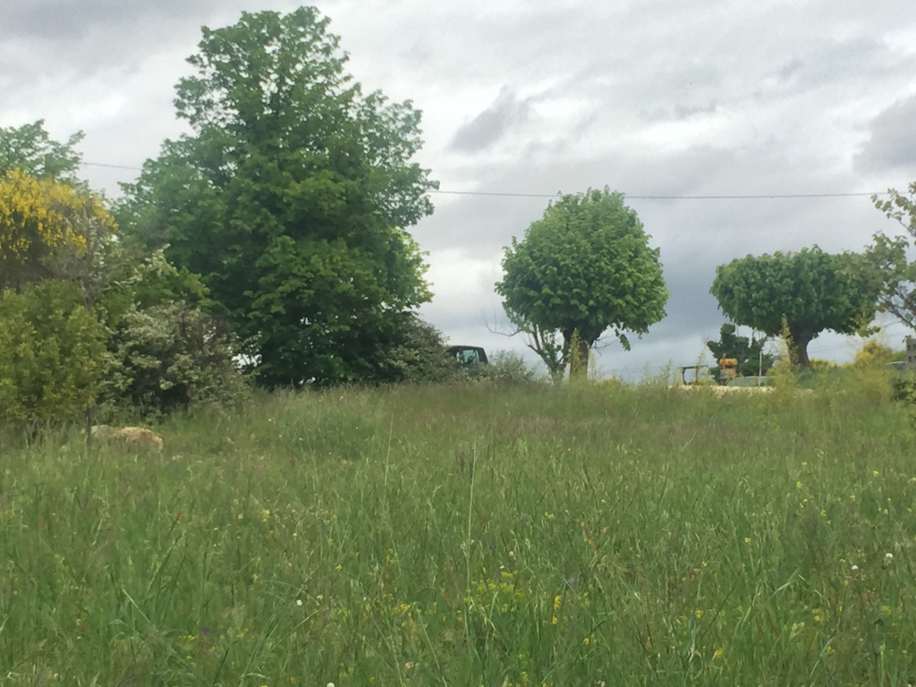 Magnifique Terrain constructible de 2100 m2 à Villedieu proche de Nyons et de Vaison la Romaine avec une vue magnifique 0668368774