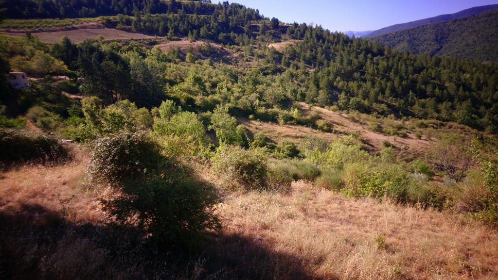 Terrain à bâtir de 1208m² . Vue sur le Mont-Ventoux.0633719987