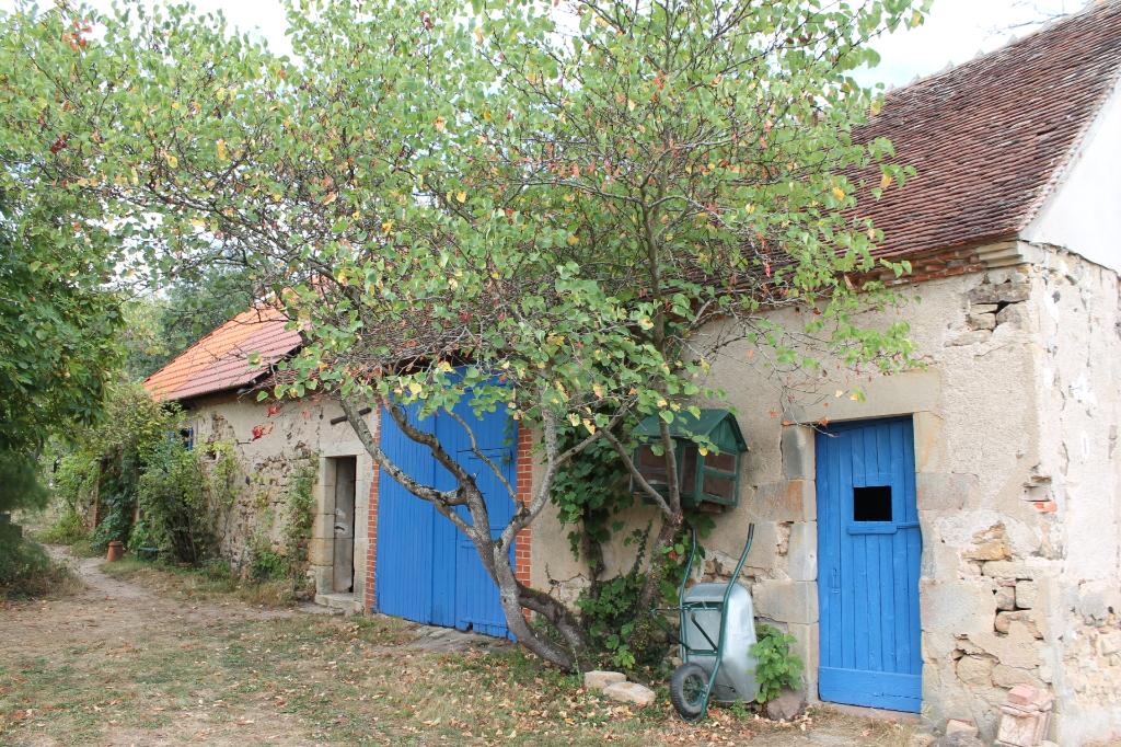 Couleuvre - Petite fermette à rénover avec  plus de 1.3 ha de terrain.