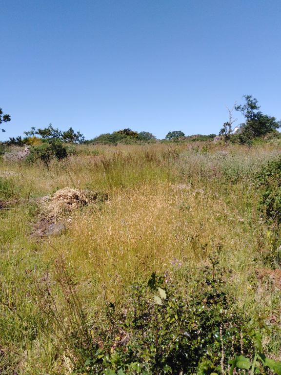 Lanildut terrain constructible