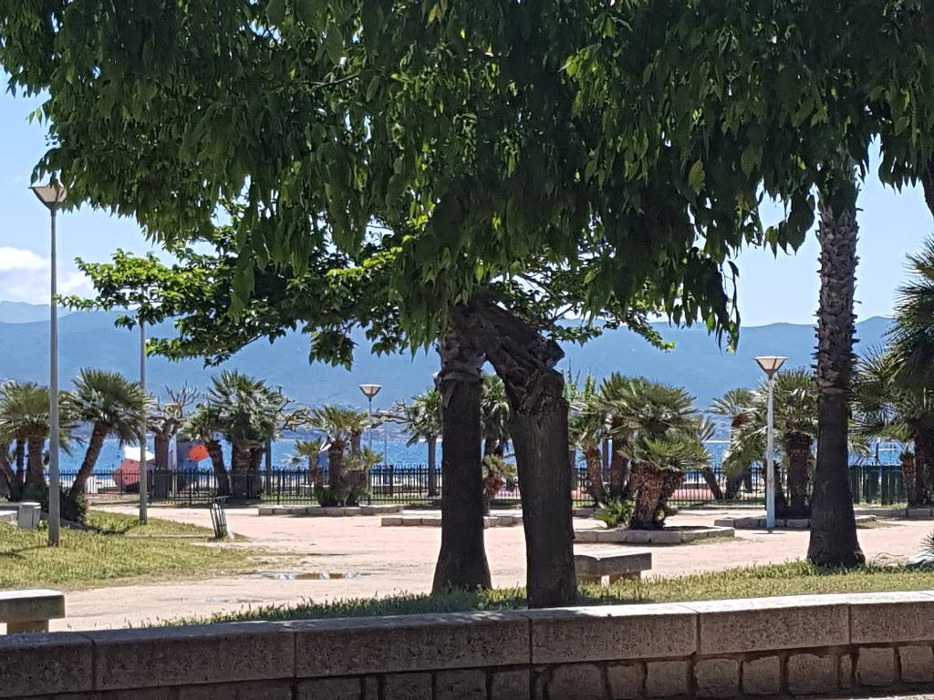 Ajaccio Vente  murs commerciaux face à la mer possibilité de droit au bail