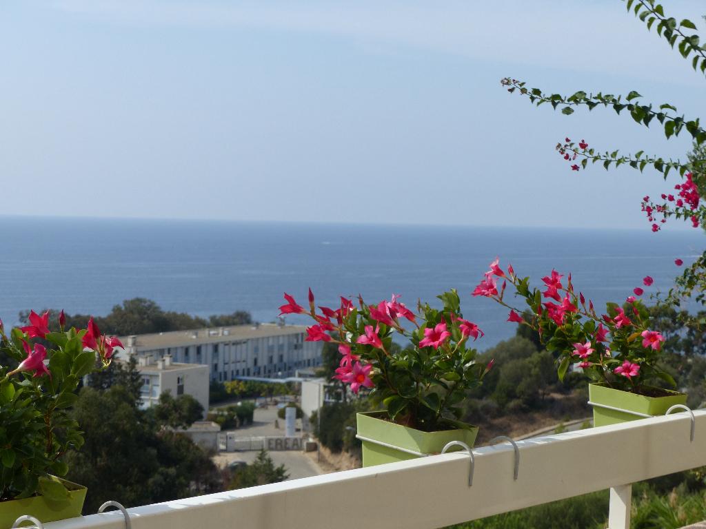 Route des Sanguinaires Appartement duplex  4 pièce(s) 125m² belle vue mer