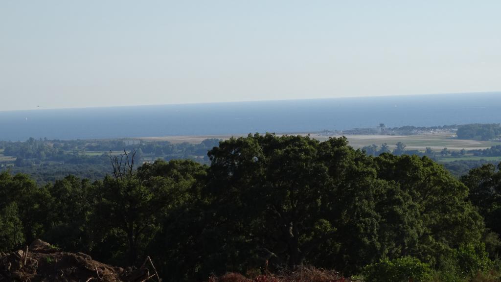 Bastelicaccia très beau Terrain  plat constructible1000m²  avec Vue Mer