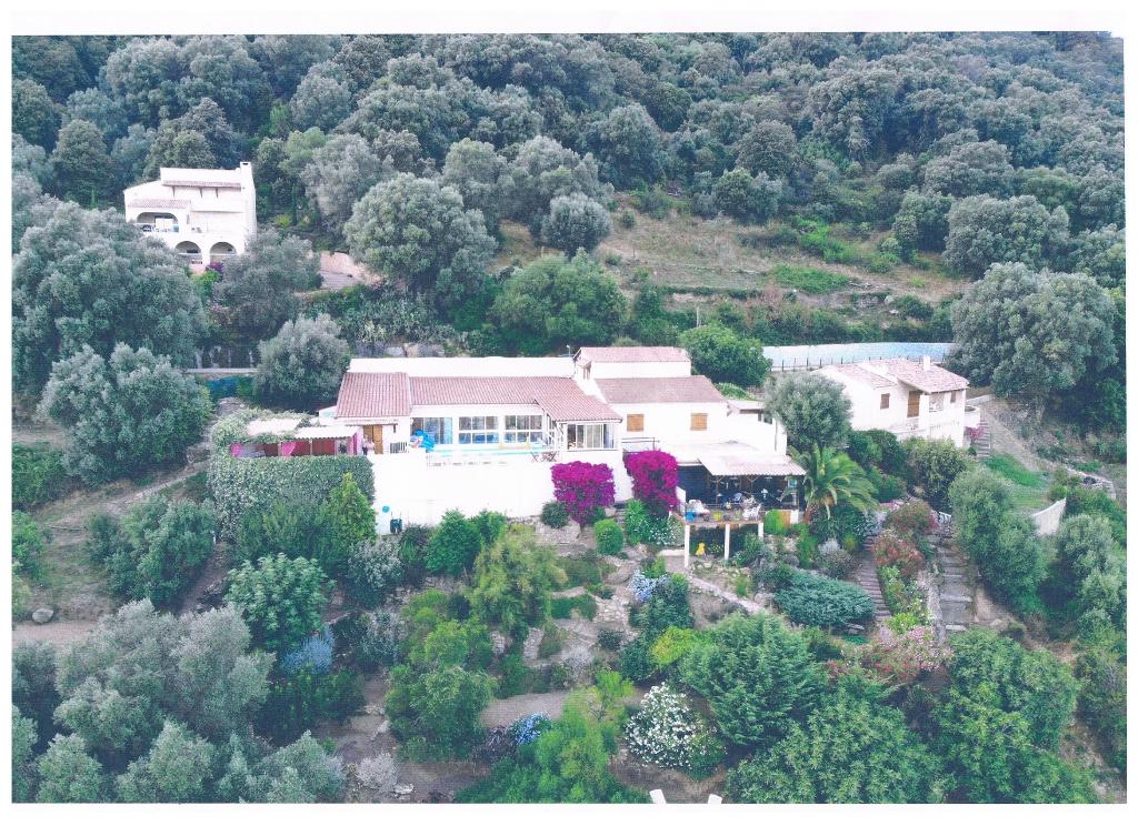 Villa Olmeto 335 m2 vue sur mer et montagne avec piscine
