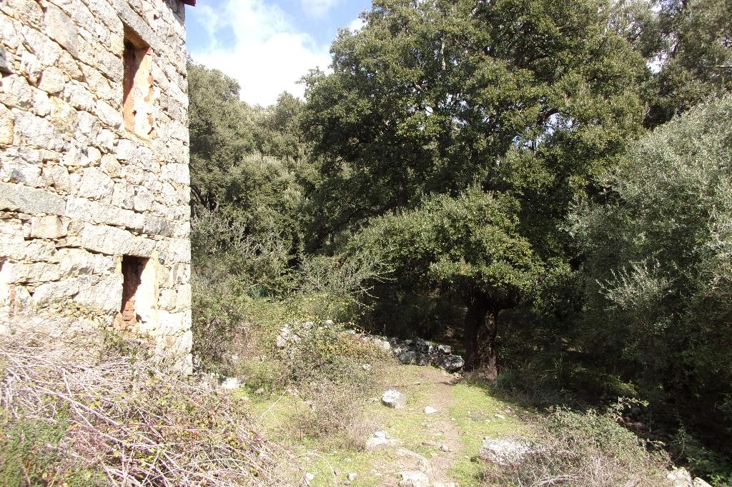 Maison Sainte Lucie De Tallano 3 pièce(s)
