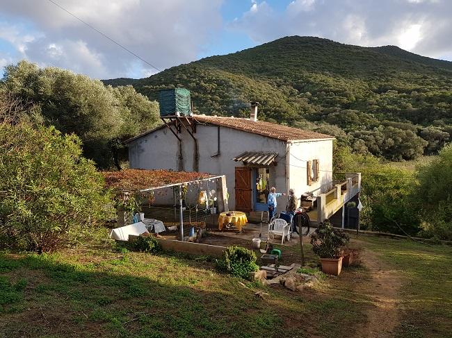 Maison  à CAPO di FENO, 70 m2
