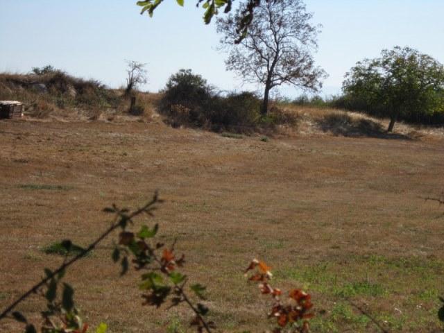 Boen prox. terrain 1000 m2