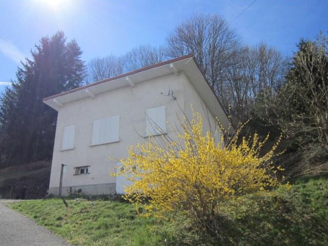 Prox. Noirétable Maison 3 chambres et 4500m² de terrain