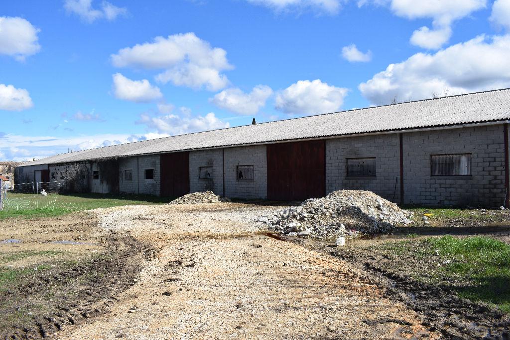 Hangar plus terres agricoles