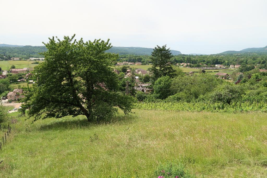 10 min de LAGNIEU - TERRAIN A BATIR de 872 m2 - Vue panoramique
