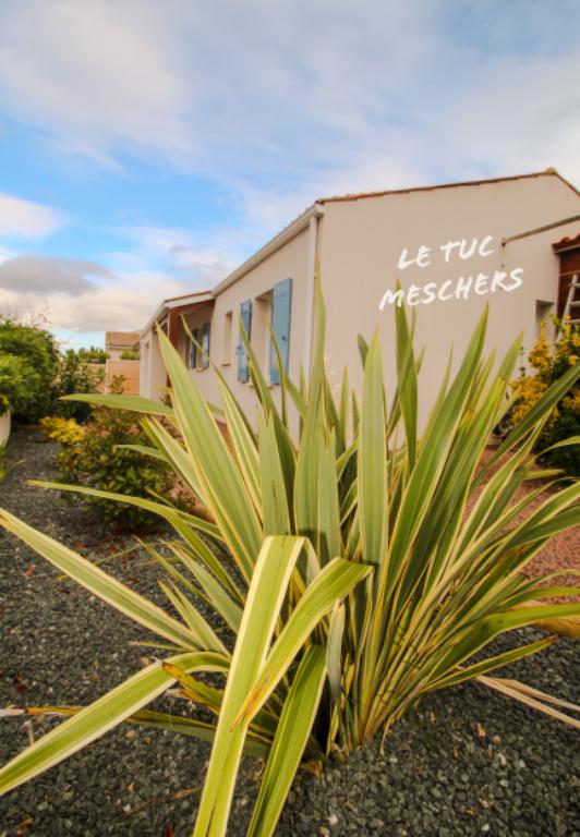 Exclusivité Agence Maison Meschers Sur Gironde