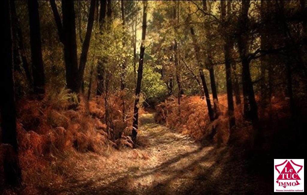 Domaine forestier Civrac De Blaye