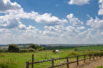 PROPRIETE EQUESTRE Pays de Bray (DOUDEAUVILLE), 2 hectares 6, 2 habitations, 10 pièces 4/14