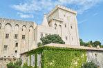 Appartement Avignon dans hôtel particulier avec vue panoramique sur Palais 4/10