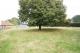 TEXT_PHOTO 0 - Terrain Le Mesnil Rogues 1000 m2