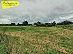 A vendre terrain agricole LA HAYE-PESNEL (50320) d'une superficie d'env.8000m². 1/2