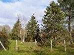 A VENDRE Terrain constructible sur la commune de Neuvy En Sullias proche Tigy 1/4